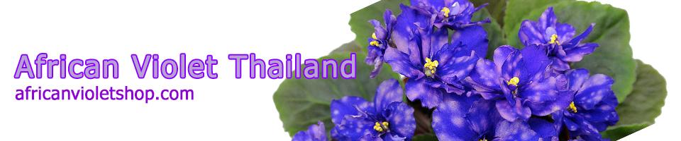 African Violet Shop