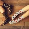 S316**พร้อมส่ง**(ปลีก+ส่ง) ถุงเท้าข้อยาว แฟชั่นเกาหลี มี 12 คู่ต่อแพ็ค พร้อมกล่อง เนื้อดี งานนำเข้า(Made in China)