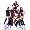 Like a Cat Type B cd + photobook + PHOTOCARD (First Press Limited Edition)(Japan Version)