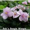 Rob's Boogie Woogie - Semiminiature
