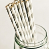 Paper Straws in Gray Stripes