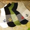 S213**พร้อมส่ง** (ปลีก+ส่ง) ถุงเท้าแฟชั่นเกาหลี ข้อสั้น ชาย ลายสมอ คละ 5 สี มี 10 คู่ต่อแพ็ค เนื้อดี งานนำเข้า(Made in China)