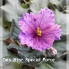 Deo Star Special Force - Standard