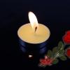 Candle-เทียนไข