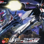 1/72 Macross Frontier VF-25F Messiah Valkyrie Alto Custom Plastic Model