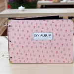 DIY album (Spring)