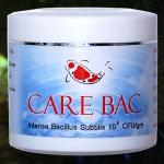 จุลินทรีย์ บำบัดน้ำ Carebac
