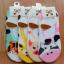 S181 **พร้อมส่ง** (ปลีก+ส่ง) ถุงเท้าคัทชู แฟชั่นเกาหลี มี 4 สี(แบบ) เนื้อดี งานนำเข้า(Made in China) thumbnail 21