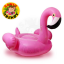 Flamingo (Medium) thumbnail 1
