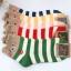 A043**พร้อมส่ง**(ปลีก+ส่ง) ถุงเท้าแฟชั่นเกาหลี ข้อสั้น มีหู มี 5 แบบ เนื้อดี งานนำเข้า( Made in Korea) thumbnail 2