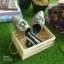 รองเท้าหัวแหลมแบบสวม ติดดอกคามิเลียพร้อม Logo CC thumbnail 7