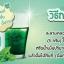 คลอโรมิ้นต์ Chloro Mint คลอโรฟิลล์ Chloro Phyll thumbnail 5