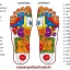 K023-SBL **พร้อมส่ง** (ปลีก+ส่ง) รองเท้านวดสปา เพื่อสุขภาพ ปุ่มเล็ก (ใส) หูหนีบ สีน้ำเงิน ส่งคู่ละ 120 บ. thumbnail 6