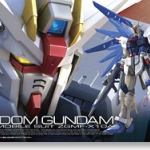 [RG] Freedom Gundam
