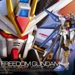 [RG] Strike Freedom Gundam