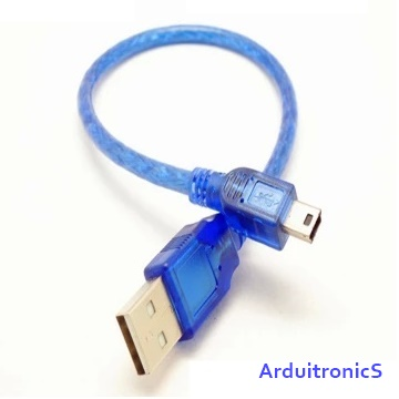 Mini USB Cable (30cm)