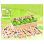 กล่องไม้บัตรภาพจับคู่ Learning classification box